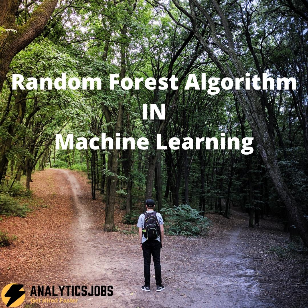 Random Forest Algorithm in Machine Learning